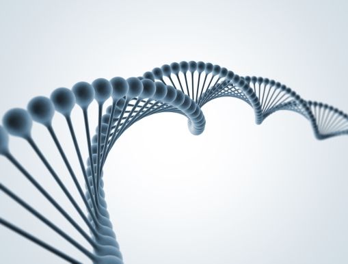 DNA Double Helix Molecular Structure